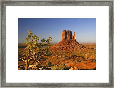 Mitten And Juniper Framed Print by Winston Rockwell