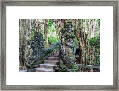 Monkey Forest Ubud - Bali Framed Print
