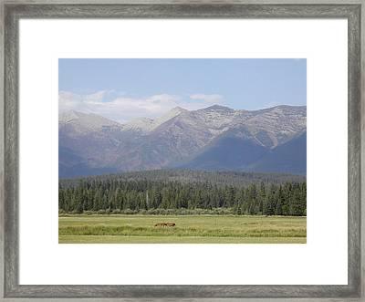 Montana Mountains Framed Print by Lisa Patti Konkol