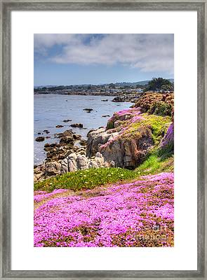 Monterey Bay Framed Print