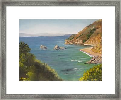 Monterey II Framed Print by Lisa Barr