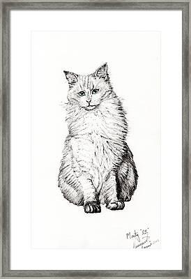 Monty Framed Print by Vincent Alexander Booth