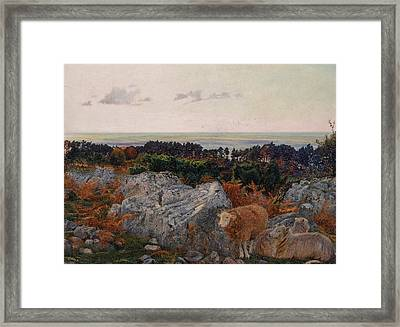 Morecambe Bay From Warton Crag Framed Print by Daniel Alexander Williamson