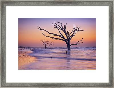 Morning At Botany Bay Plantation Framed Print