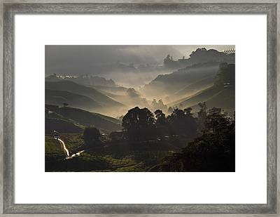 Morning At Cameron Highlands Framed Print by Ng Hock How