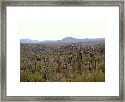 Framed Print featuring the photograph Morning Light by Gordon Beck