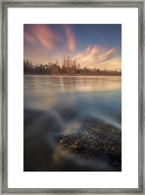 Morning On River Framed Print by Davorin Mance