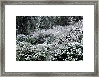 Morning Snow In The Garden Framed Print