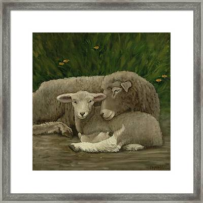 Mother And Lamb Framed Print