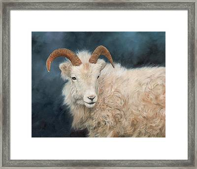 Mountain Goat Framed Print by David Stribbling