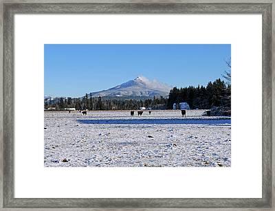 Mt. Pilchuck Framed Print