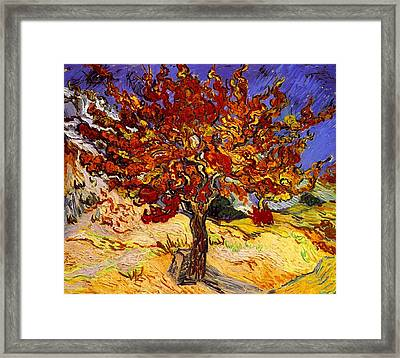 Framed Print featuring the painting Mulberry Tree by Van Gogh