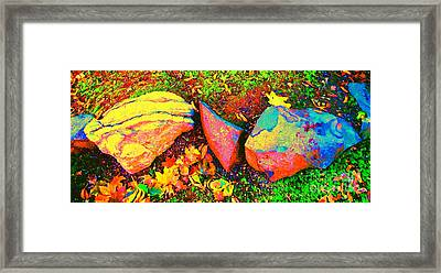 Framed Print featuring the photograph My Back Yard Rocks by Ann Johndro-Collins