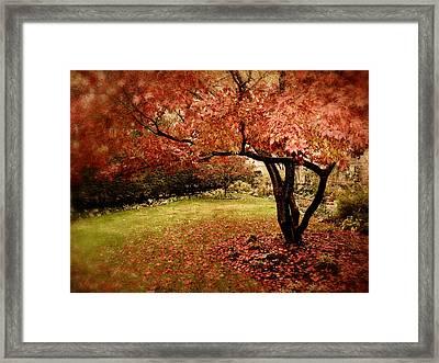 Mystical Maple Framed Print