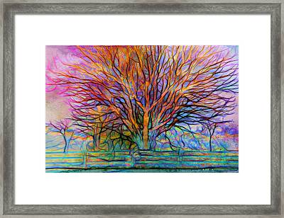 Naked Tree Framed Print by Lilia D