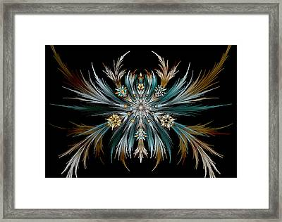 Native Feathers Framed Print
