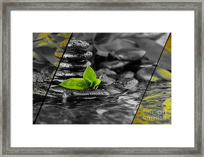 Nature Collection Framed Print by Marvin Blaine