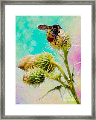 Collection Without Distructions Framed Print by Manjot Singh Sachdeva