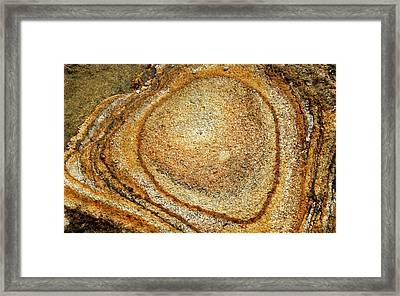 Nature Rings Framed Print