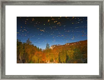 Naturpainting  Framed Print