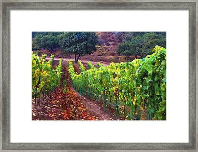 Nearly Harvest Framed Print by Patricia Stalter