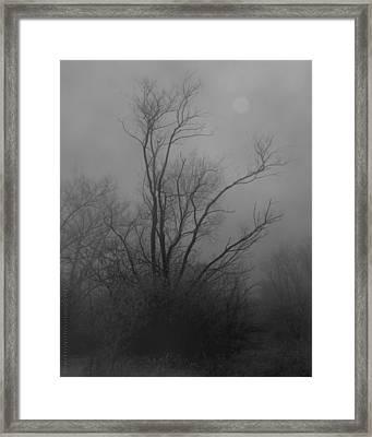 Nebelbild 13 - Fog Image 13 Framed Print