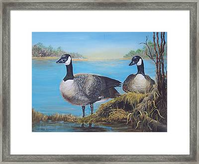 Nesting At Millsboro Pond Framed Print