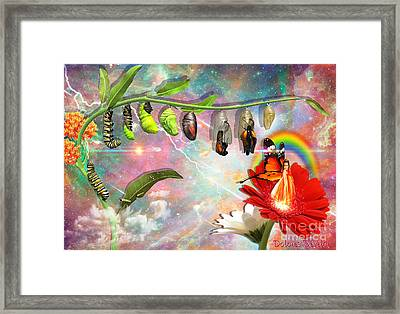 New Life Framed Print by Dolores Develde
