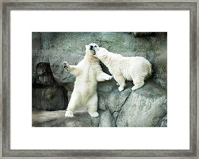 Next To Reflection Framed Print