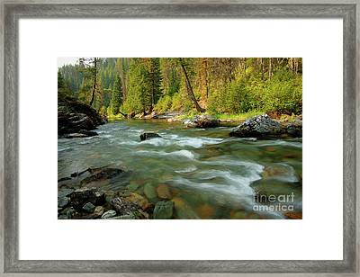 North Fork Of The St. Joe Framed Print