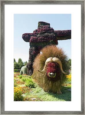 Northwest Territories Entry Is The Muskoxen Framed Print