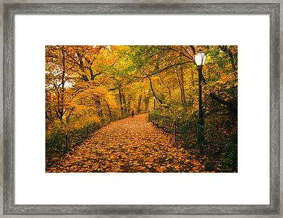 Nyc Autumn Framed Print by Vivienne Gucwa