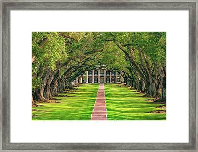 Oak Alley Evening Framed Print