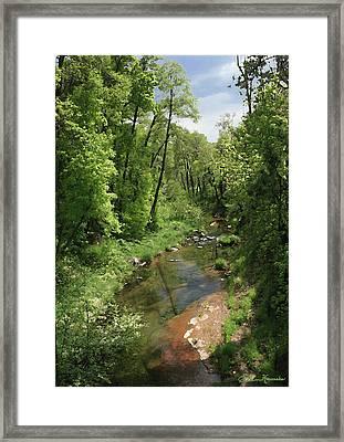 Oak Creek Framed Print by Ellen Henneke