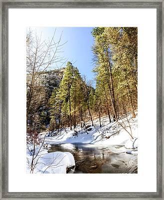 Oak Creek In Winter Framed Print by Alexey Stiop