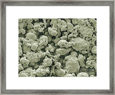 Oat Flour, Sem Framed Print by Scimat