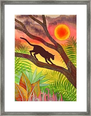 Ocelot At Sunset Framed Print by Jennifer Baird