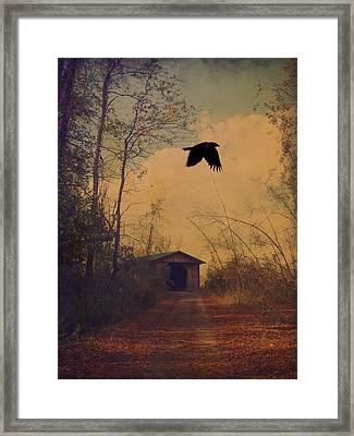 Lone Crow Flies Over The Old Country Road  Framed Print