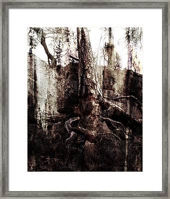 Old One Framed Print by Ken Walker