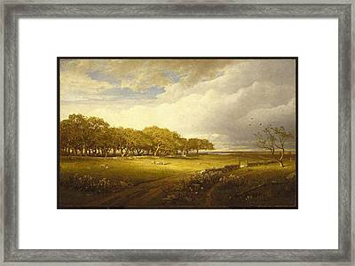 Old Orchard At Newport Framed Print