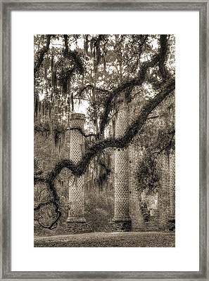 Old Sheldon Church Ruins Framed Print by Dustin K Ryan