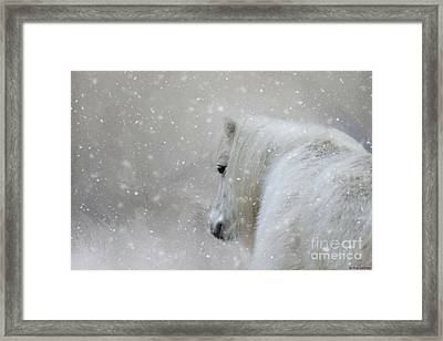 On A Cold Winter Day Framed Print