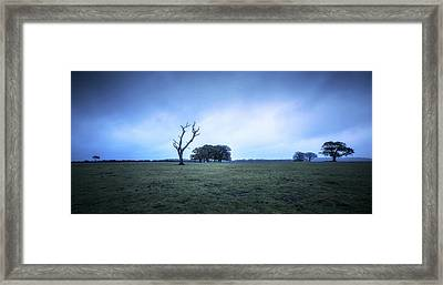 On A Field Framed Print
