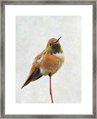 Framed Print featuring the photograph On Guard by Angie Vogel