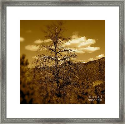 On To Pike's Peak Framed Print by Sergio Geraldes