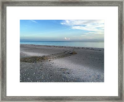 Framed Print featuring the photograph Once In A Lifetime by Melanie Moraga