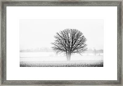Framed Print featuring the photograph One... by Nina Stavlund