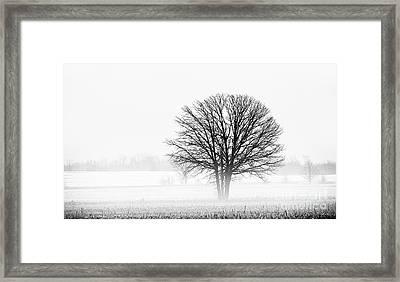 One... Framed Print by Nina Stavlund