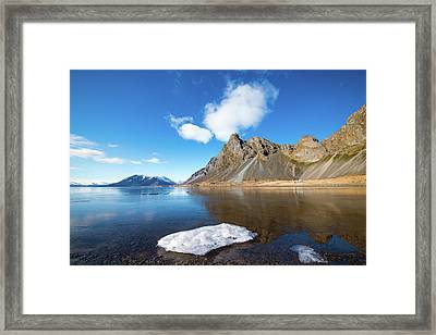 Only One Left Framed Print by Svetlana Sewell