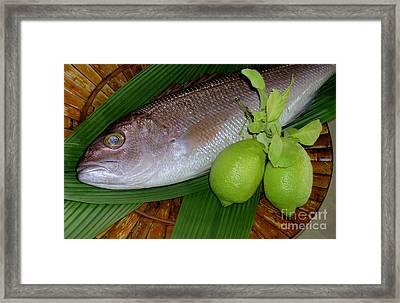 Opakapaka Framed Print by James Temple